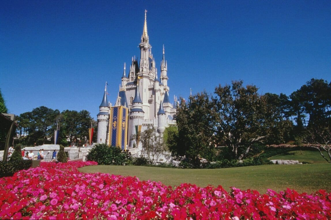 3-Day Disney Tour
