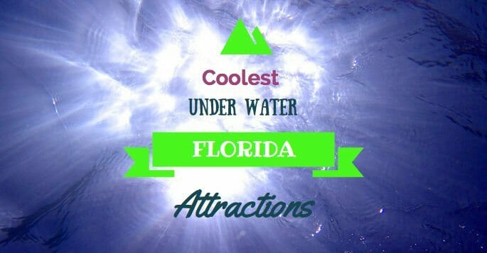 Coolest Uner Water Florida Attractions
