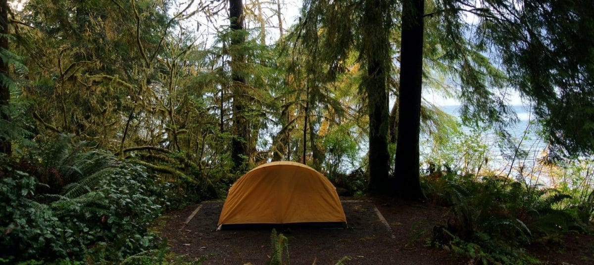 Camping_site_Lake_Quinault olympic
