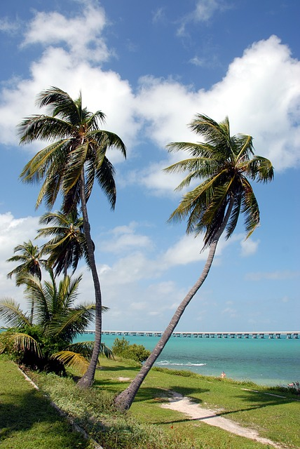 Seven Mile Bridge Pixabay Public Domain