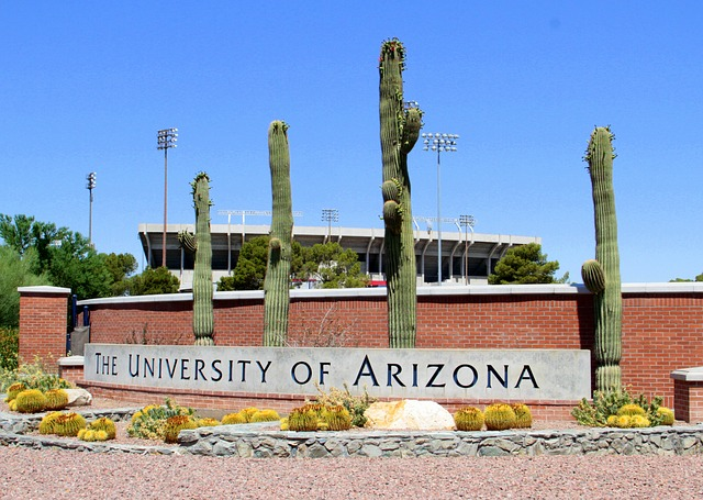 University of Arizona Pixabay Public Domain