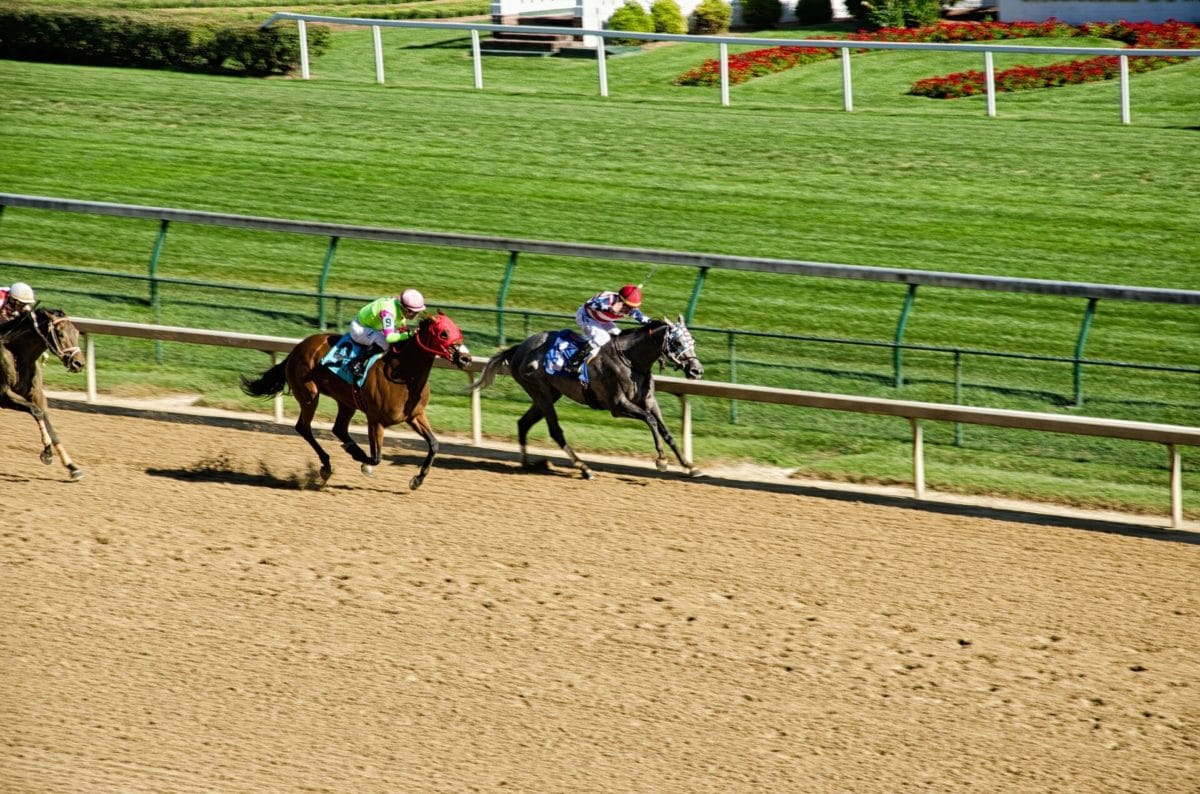 Thoroughbred Horse Racing at Churchill Downs