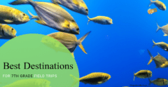 Best Destinations for 7th Grade Field Trips