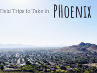 Field Trips to Take in Phoenix