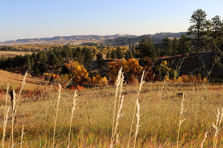 Chadron State Park Discover NW Nebraska